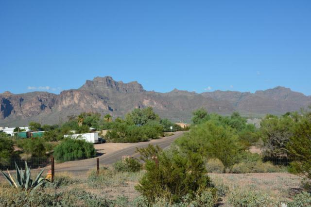 1563 N Boyd Road, Apache Junction, AZ 85119 (MLS #5650492) :: Occasio Realty