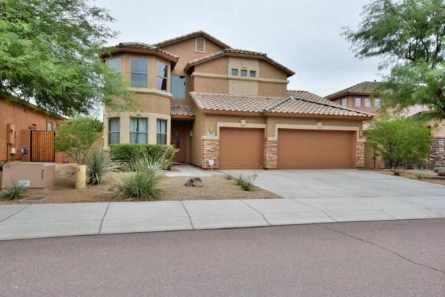 8358 W Molly Lane, Peoria, AZ 85383 (MLS #5650498) :: The Laughton Team