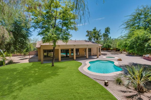 518 E Mead Place, Chandler, AZ 85249 (MLS #5650680) :: Keller Williams Realty Phoenix