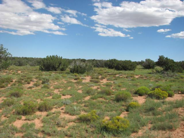 Lot 254 Chevelon Canyon Ranch #2, Overgaard, AZ 85933 (MLS #5650848) :: The Daniel Montez Real Estate Group