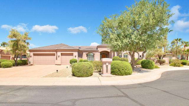 10870 E Cochise Avenue, Scottsdale, AZ 85259 (MLS #5651411) :: Arizona 1 Real Estate Team