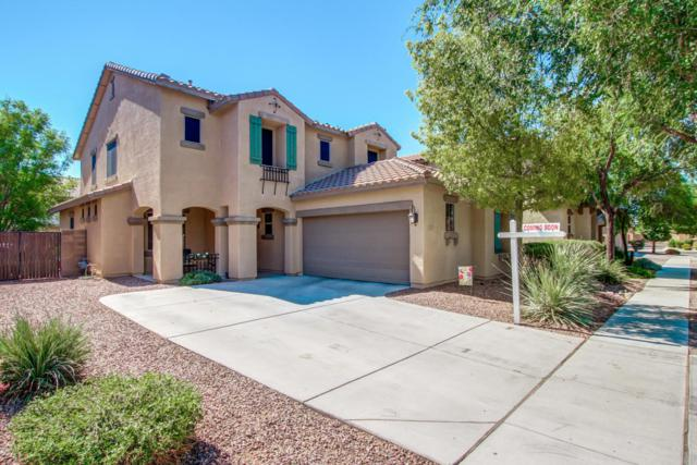 1877 S Racine Lane, Gilbert, AZ 85295 (MLS #5651973) :: The Everest Team at My Home Group