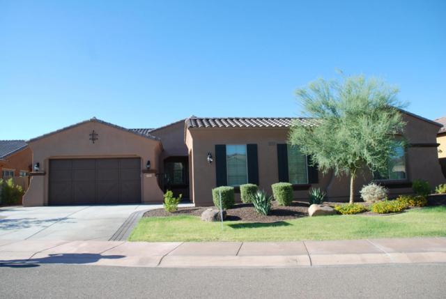 12860 W Via Caballo Blanco Drive, Peoria, AZ 85383 (MLS #5652195) :: The Worth Group