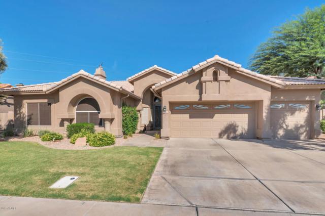 2034 E Dias Drive, Gilbert, AZ 85234 (MLS #5652207) :: The Bill and Cindy Flowers Team