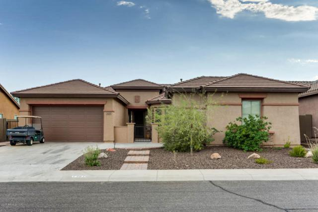 3629 W Links Drive, Phoenix, AZ 85086 (MLS #5652346) :: Cambridge Properties