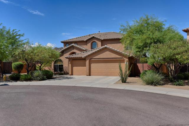 8370 W Spur Drive, Peoria, AZ 85383 (MLS #5652399) :: The Laughton Team