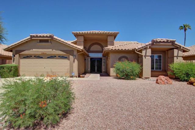 19613 N 89TH Drive, Peoria, AZ 85382 (MLS #5652997) :: Desert Home Premier