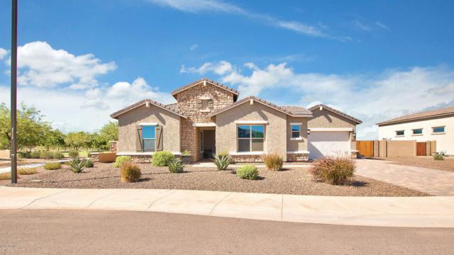 18424 W Sells Drive, Goodyear, AZ 85395 (MLS #5653390) :: Santizo Realty Group
