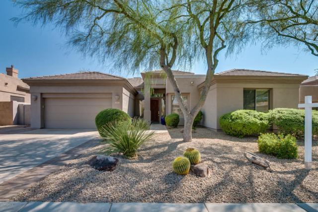 6911 E Thirsty Cactus Lane, Scottsdale, AZ 85266 (MLS #5653884) :: Desert Home Premier