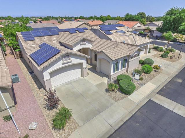 17680 W Camino Real Drive, Surprise, AZ 85374 (MLS #5654200) :: Desert Home Premier