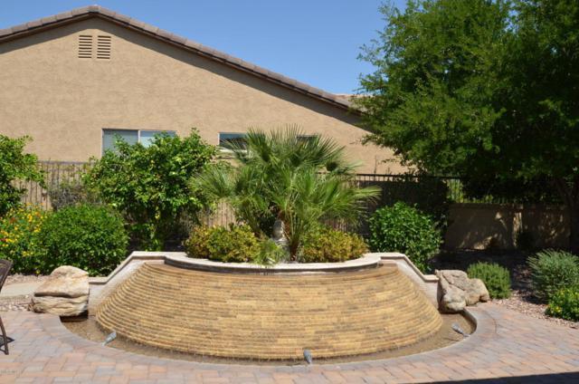 26899 N 126TH Avenue, Peoria, AZ 85383 (MLS #5654400) :: The Worth Group