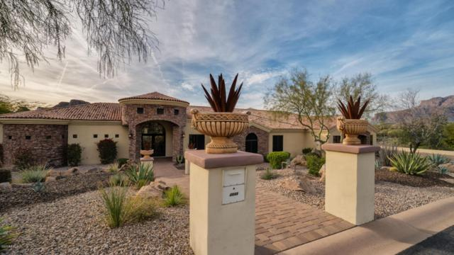 4844 S Pura Vida Way, Gold Canyon, AZ 85118 (MLS #5654944) :: The Kenny Klaus Team
