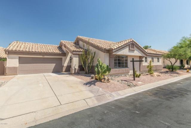17455 N Raindance Road, Surprise, AZ 85374 (MLS #5655123) :: Desert Home Premier