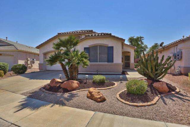 17692 N Phoenician Drive, Surprise, AZ 85374 (MLS #5655142) :: Desert Home Premier