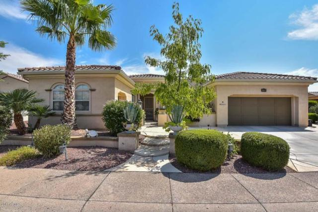 23213 N Del Monte Drive, Sun City West, AZ 85375 (MLS #5655641) :: Desert Home Premier