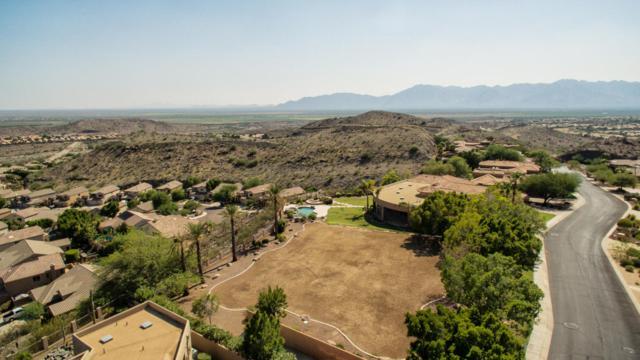 421 E Windmere Drive, Phoenix, AZ 85048 (MLS #5655963) :: Brett Tanner Home Selling Team