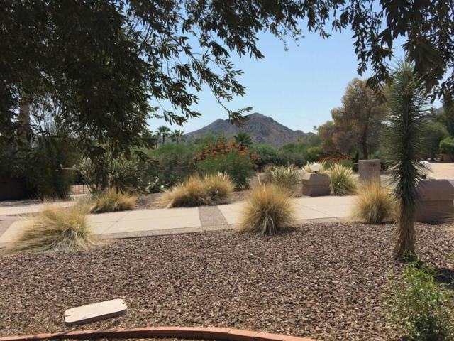 4901 E Berneil Drive, Paradise Valley, AZ 85253 (MLS #5655981) :: Lux Home Group at  Keller Williams Realty Phoenix