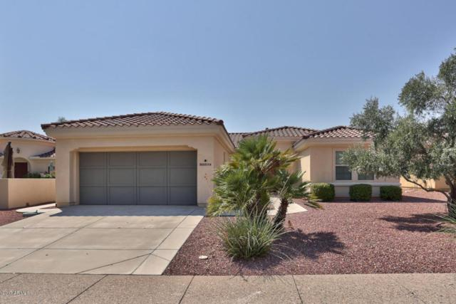 23114 N Via Vistosa Drive, Sun City West, AZ 85375 (MLS #5656190) :: Desert Home Premier