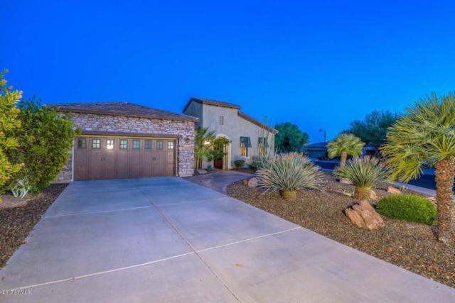 27921 N 124th Lane, Peoria, AZ 85383 (MLS #5656572) :: Desert Home Premier