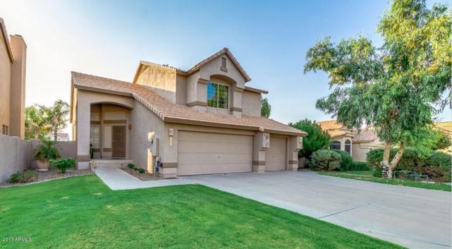 3180 S Cascade Place, Chandler, AZ 85248 (MLS #5656654) :: Revelation Real Estate