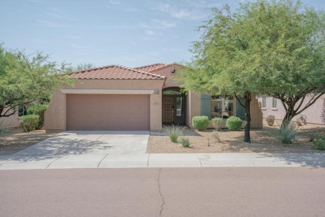 8457 W Quail Track Drive, Peoria, AZ 85383 (MLS #5656934) :: The Laughton Team