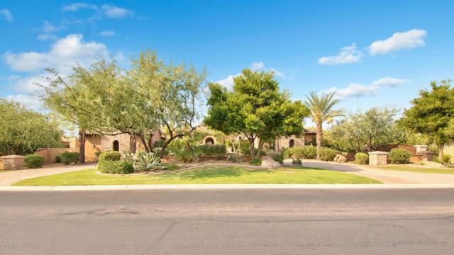 6760 E Hummingbird Lane, Paradise Valley, AZ 85253 (MLS #5657617) :: Lux Home Group at  Keller Williams Realty Phoenix