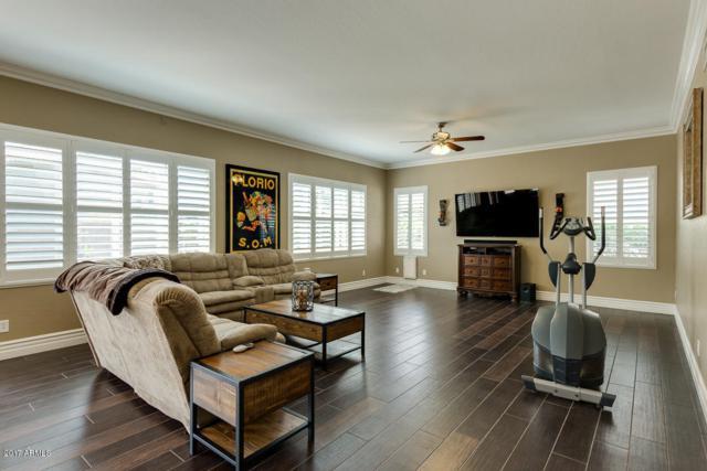 987 W Redwood Drive, Chandler, AZ 85248 (MLS #5657792) :: Revelation Real Estate