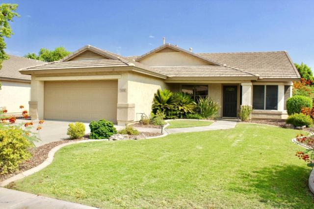 6308 W Oraibi Drive, Glendale, AZ 85308 (MLS #5658103) :: The Laughton Team