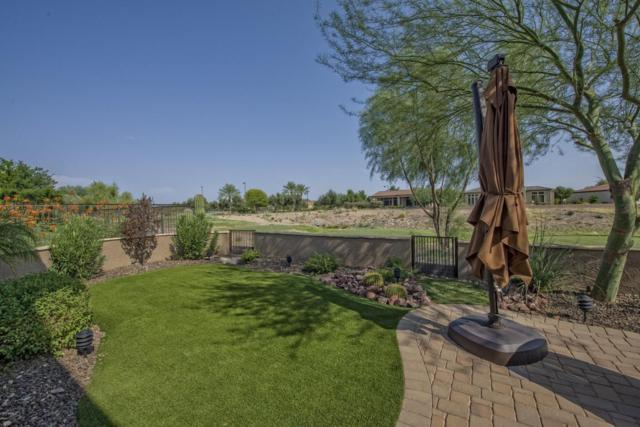 28217 N 128TH Drive, Peoria, AZ 85383 (MLS #5658756) :: The Worth Group