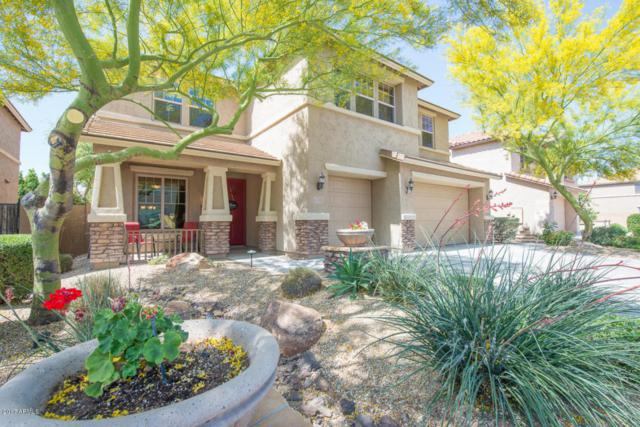 5311 W Pinnacle Vista Drive, Phoenix, AZ 85083 (MLS #5658779) :: The Laughton Team