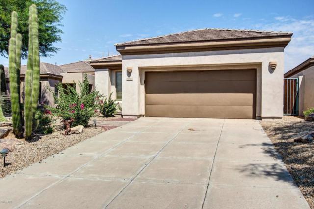6782 E Nightingale Star Circle, Scottsdale, AZ 85266 (MLS #5658888) :: Desert Home Premier