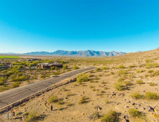3116 W Briarwood Terrace, Phoenix, AZ 85045 (MLS #5659038) :: Occasio Realty