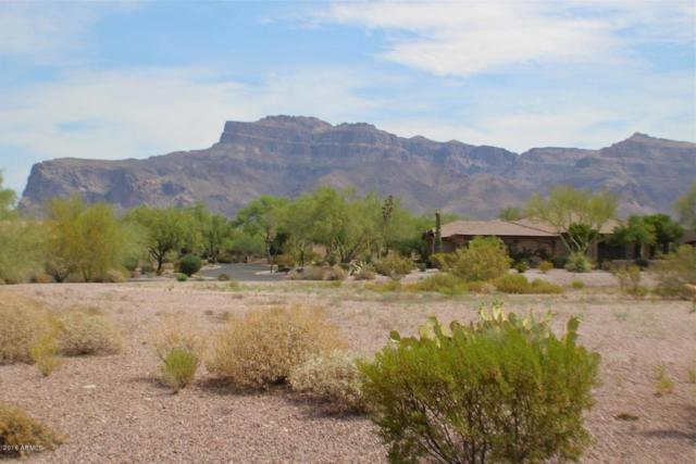 3876 S Ponderosa Drive, Gold Canyon, AZ 85118 (MLS #5659111) :: Revelation Real Estate