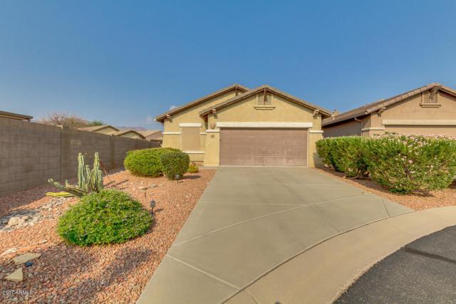 10812 E Second Water Trail, Gold Canyon, AZ 85118 (MLS #5659164) :: Revelation Real Estate