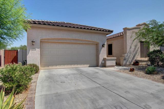 17657 W Agave Road, Goodyear, AZ 85338 (MLS #5659323) :: Kortright Group - West USA Realty