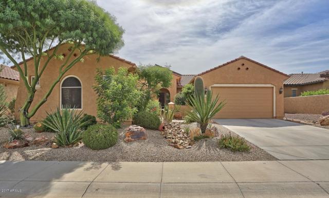 20337 N 262ND Drive, Buckeye, AZ 85396 (MLS #5659462) :: Desert Home Premier