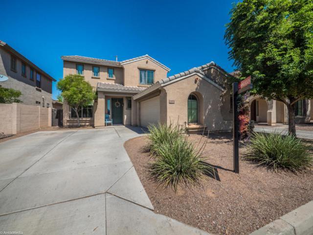 21074 E Munoz Street, Queen Creek, AZ 85142 (MLS #5659621) :: Revelation Real Estate