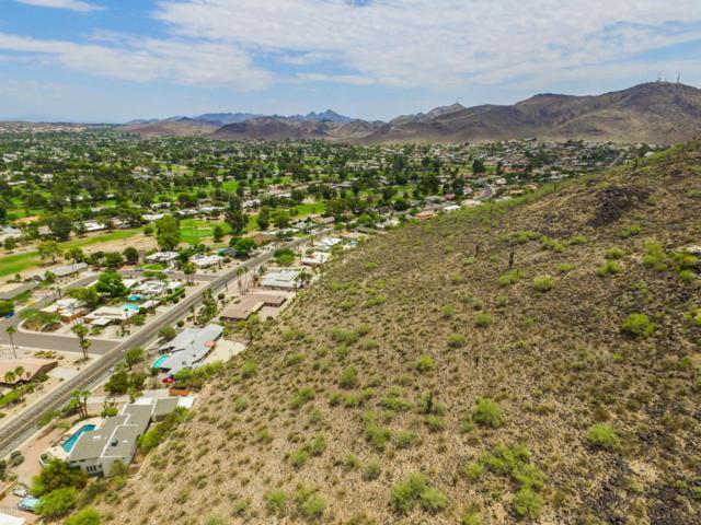 14256 N Coral Gables Drive, Phoenix, AZ 85023 (MLS #5659806) :: Occasio Realty
