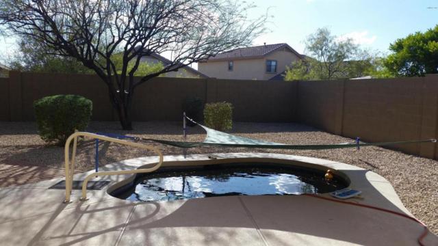 40028 N Cross Timbers Court N, Anthem, AZ 85086 (MLS #5660147) :: Desert Home Premier