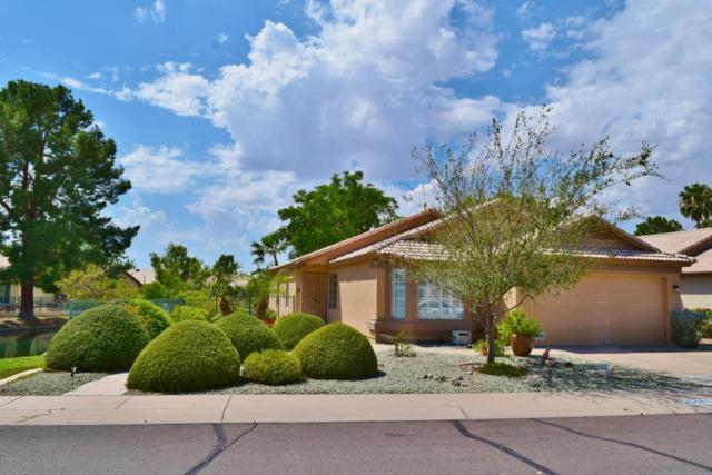 20440 N 105TH Avenue, Peoria, AZ 85382 (MLS #5660196) :: Desert Home Premier