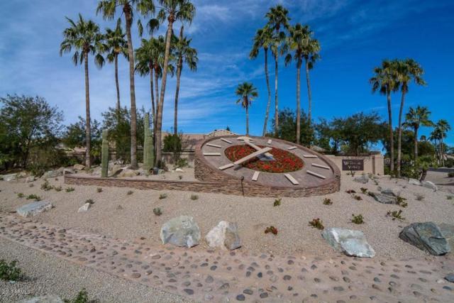 8531 W Marco Polo Road, Peoria, AZ 85382 (MLS #5660313) :: Desert Home Premier