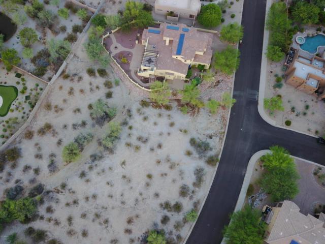 18365 W Porter Drive, Goodyear, AZ 85338 (MLS #5660369) :: Occasio Realty