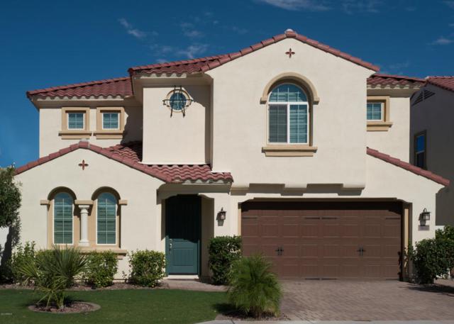 3210 S Waterfront Drive, Chandler, AZ 85248 (MLS #5660372) :: Revelation Real Estate