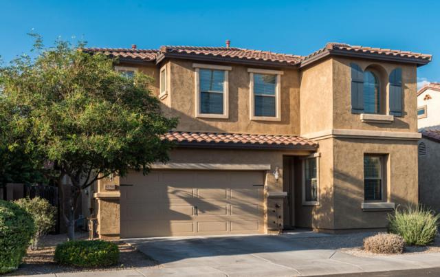 3256 E Meadowview Drive, Gilbert, AZ 85298 (MLS #5660413) :: The Kenny Klaus Team