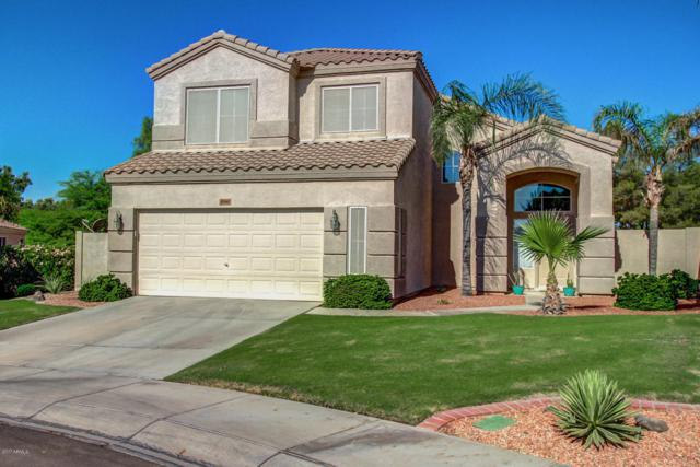 3580 S Barberry Place, Chandler, AZ 85248 (MLS #5660555) :: Revelation Real Estate