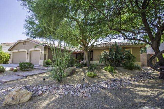 13615 W Windsor Boulevard, Litchfield Park, AZ 85340 (MLS #5660835) :: Devor Real Estate Associates
