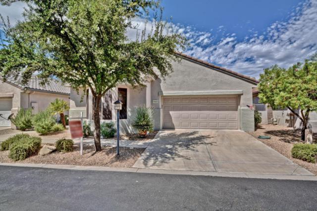 15523 W Coral Pointe Drive, Surprise, AZ 85374 (MLS #5660910) :: Desert Home Premier