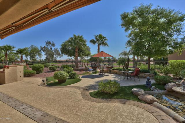 23011 N Las Positas Drive, Sun City West, AZ 85375 (MLS #5660916) :: Desert Home Premier