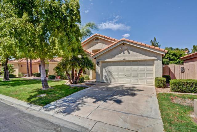 9428 W Kerry Lane, Peoria, AZ 85382 (MLS #5660959) :: Desert Home Premier