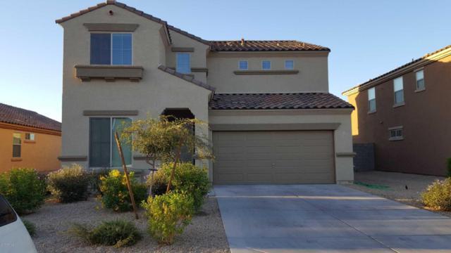 11963 W Davis Lane, Avondale, AZ 85323 (MLS #5661127) :: Lifestyle Partners Team